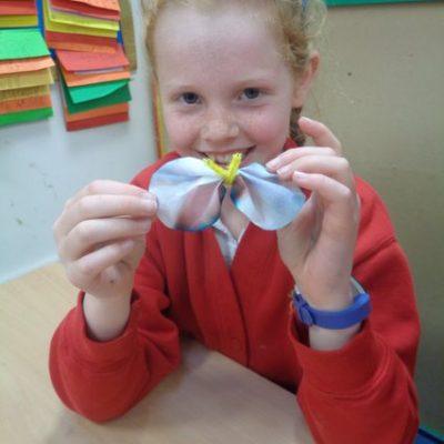 Chromatography Butterflies!