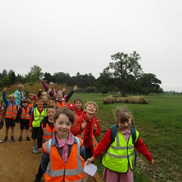 KS1 Trip to Cotswold Wildlife Park