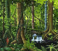 Rainforests Curriculum Newsletter