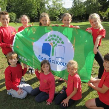 We are an 'Eco-School'!