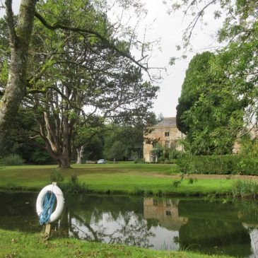 Tuesday at Hooke Court